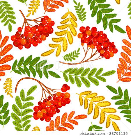 Rowan berry seamless texture. Autumn vector 28791136