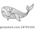 鲸鱼 矢量 矢量图 28794164