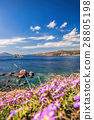 Cape Sounion with flowers in Greece 28805198