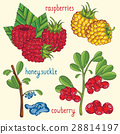 Fresh berries mix isolated, raster illustration 28814197