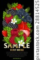 Fresh berries mix isolated, raster illustration 28814525