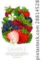 Fresh berries mix isolated, raster illustration 28814528