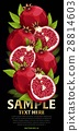 水果 混合 树叶 28814603