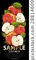 水果 混合 树叶 28814609