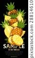 水果 混合 树叶 28814610