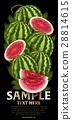 水果 混合 树叶 28814615