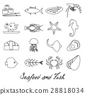 seafood and fish food set of simple outline icons 28818034
