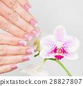blossom, flower, finger 28827807