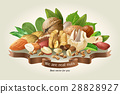 illustration mix of different types nuts 28828927