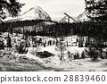 Solisko, springboard, ski 28839460