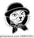 cat color woman 28842361