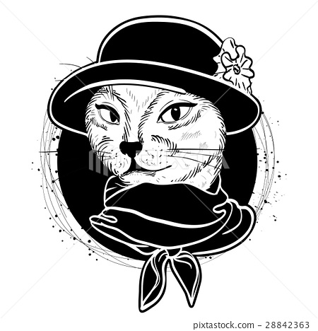 Vector color set of elegant cat woman face 28842363