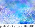 冬天樹水彩柔和的風格 28843481