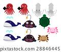 Underwater creatures 28846445