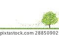 배경, 벡터, 새잎 28850902