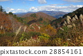 Autumn leaves and mountains / The autumn leaves and the mountains 28854161