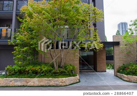 上野,花園大夏,Ueno, garden big summer,上野、大 28866407
