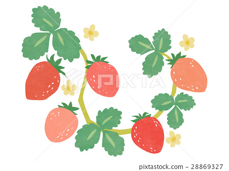 strawberries, strawberry, fruit 28869327