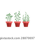 Vector potted plants 28870697