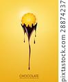 Sliced lemon dipped melting dark chocolate, fruit 28874237