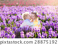 Kids in blooming garden with hyacinth flowers 28875192