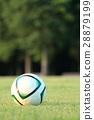 축구공, 잔디밭, 축구 28879199