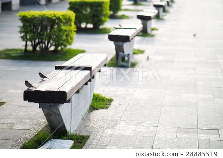 路邊的長椅 28885519