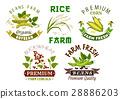 Vegetable, cereal, bean farm emblem set design 28886203