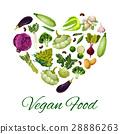 vegetable heart vector 28886263