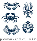 Seafood icon set with crab and lobster 28886335