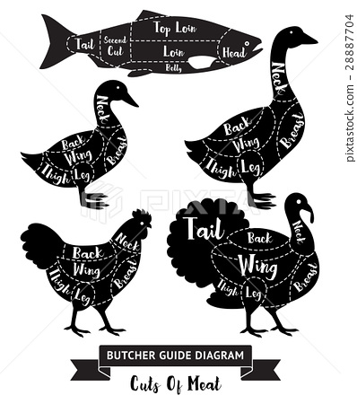 Butcher guide cuts of meat diagram.  28887704