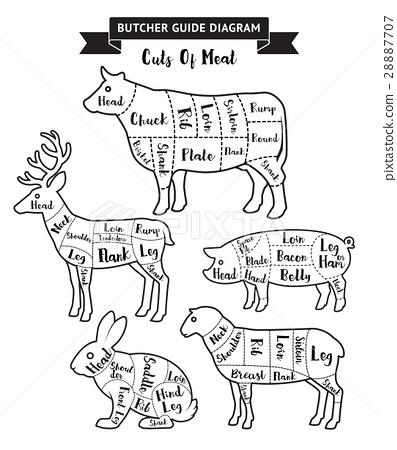 Butcher Guide Cuts Of Meat Diagram