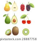 水果 颜色 矢量 28887758