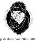 cat color woman 28890409