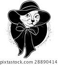 cat color woman 28890414