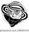 cat color woman 28890419
