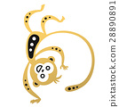 vector, illustration, monkey 28890891