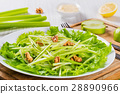 salad, waldorf, walnut 28890966