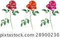 赤いバラ3輪 28900236