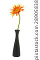 single gerbera  flower yellow on vase isolated 28905838