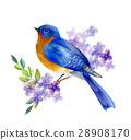 Bird of Spring vector 28908170