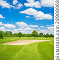 Green golf course field and blue cloudy sky 28908968