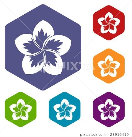 Frangipani flower icons set 28916419
