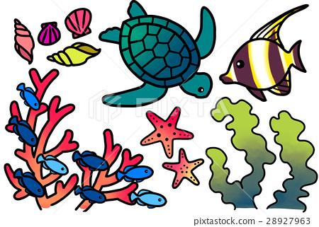 熱帶魚 魚 夏天 28927963
