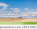 Agricultural landscape. With tractor plow a field. 28933082