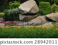 สวน,สวนสาธารณะ,แปลงดอกไม้ 28942011