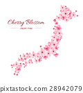 cherry blossom realistic vector, sakura,japan map 28942079