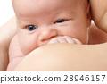 Newborn in mother's hands 28946157