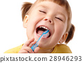 Cute child with toothbrush 28946293