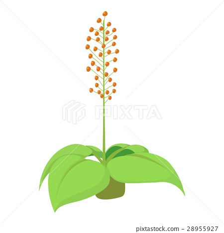 Home flower icon, cartoon style 28955927